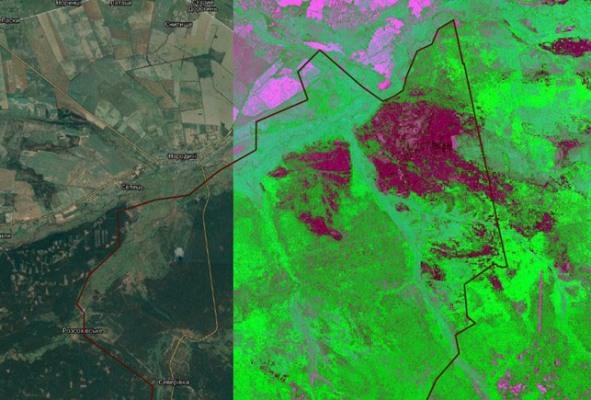 Чим живе Древлянський заповідник, де подекуди рівень радіації більший, ніж у Чорнобилі