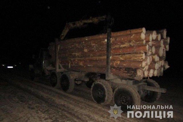 На Олевщині затримали одразу два ЗІЛа з нелегальною деревиною. ФОТО