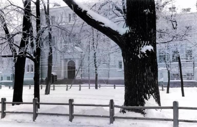 Яким був житомирський Бульвар та сільськогосподарський інститут взимку 1943 року? ФОТО