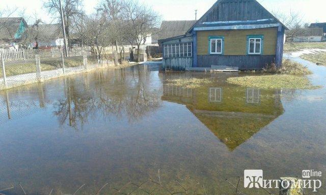 """Будинки жителів Житомирщини """"тонуть"""" у воді після танення снігу. ФОТО"""