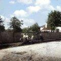 Несподіване старовинне фото вулиці Фещенка-Чопівського у Житомирі (колишня Миколаївська)