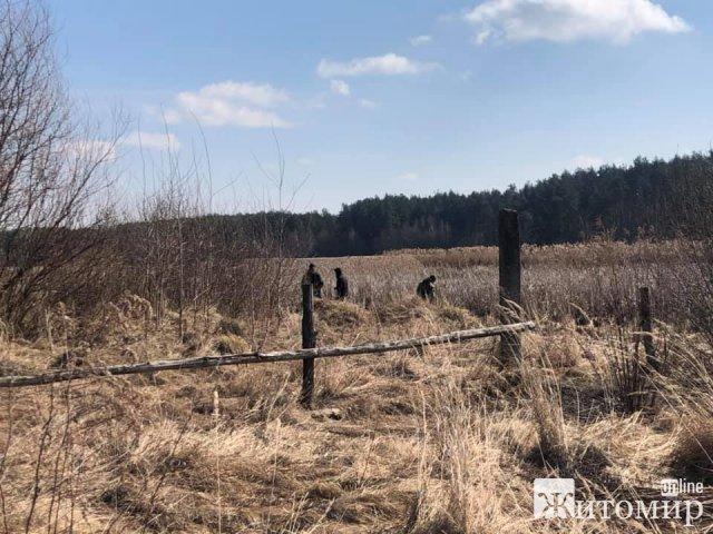 На Житомирщині третій день шукають 17-річного хлопця: прочісують водойми, чагарники та хати-пустки. ФОТО