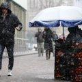 З понеділка Житомирщину накриє снігопад