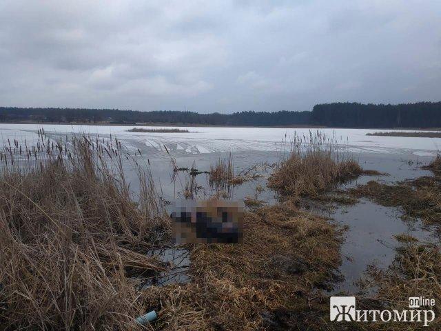 Зниклого чотири дні тому в Радомишлі 17-річного хлопця знайшли мертвим. ФОТО