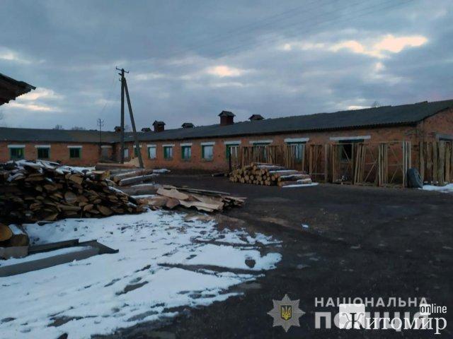 Поліцейські неподалік Житомира зупинили вантажівку з деревиною, у документах були розбіжності. ФОТО