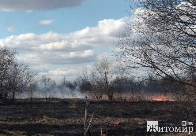 Коростенські вогнеборці ліквідували займання сухостою. ФОТО