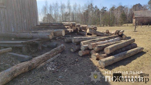 У селі на Житомирщині працювала нелегальна лісопильня. ФОТО