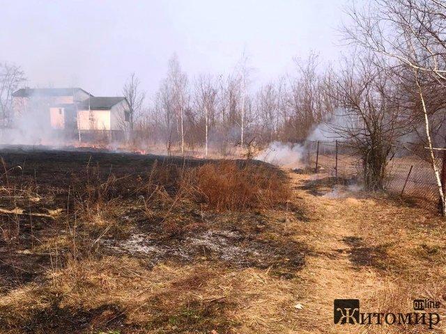 У Коростенському районі селяни гасили займання сухої трави. ФОТО
