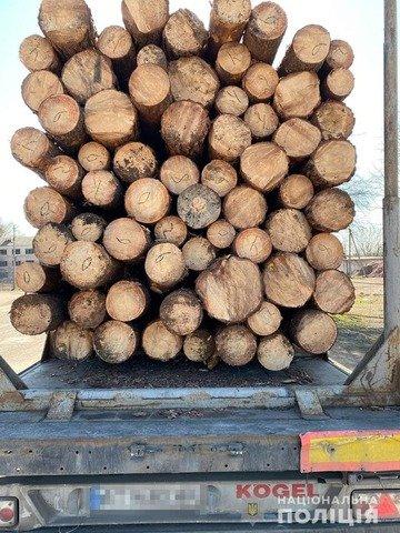 В Овруцькому районі виявили вантажівку з нелегальною деревиною. ФОТО