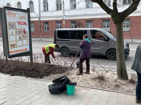 """У Житомирі на Великій Бердичівській працюють """"Зеленбудівці"""". ФОТО"""