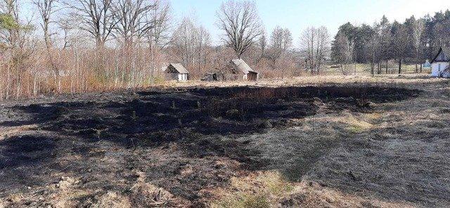 У Новоград-Волинському районі гасили сухостій, що загорівся. ФОТО
