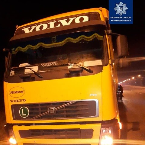 На Житомирщині виявили вантажівку з нелегальним дубом. ФОТО