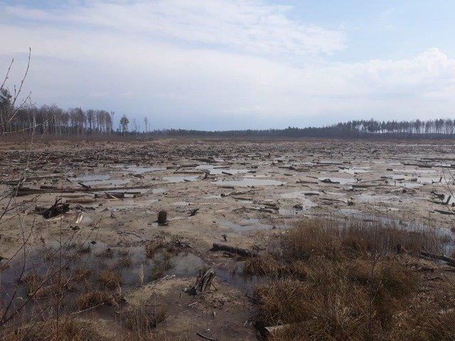 У Коростенському районі виявили нелегальне видобування бурштину. ФОТО