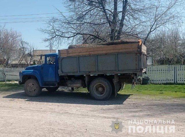 На Житомирщині зафіксували два факти незаконного перевезення лісу. ФОТО