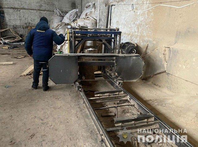 На Житомирщині чоловікам, які займались незаконними порубками, загрожує до 6 років ув'язнення. ФОТО