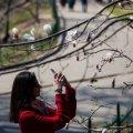 У квітні на українців чекає мінімальна кількість вихідних днів