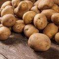 """Світлана Фус: У більшості """"гріхів"""" звинувачувати картоплю не варто"""