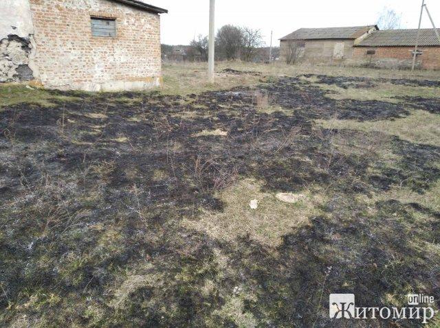 На Житомирщині рятувальники гасили займання сухостою: вогонь наближався до будинків. ФОТО