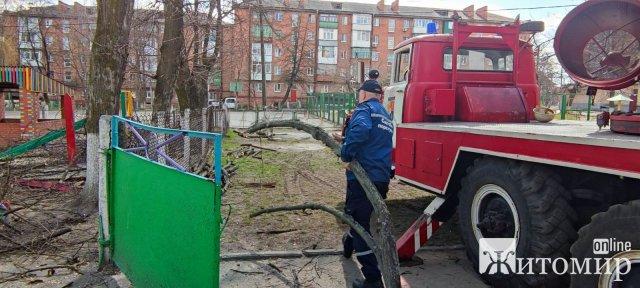 Мер Радомишля попросив рятувальників зрізати аварійні дерева на території навчальних закладів. ФОТО