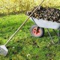 Житомирське прибирання: із суботниками виходило краще, ніж із толокою