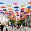 Влада Житомира планує заставити Михайлівську зеленими насадженнями