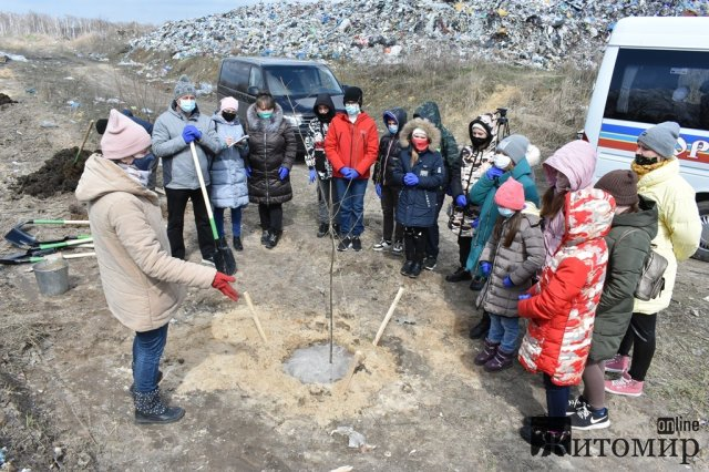 На території коростенського сміттєзвалища діти садили дерева. ФОТО