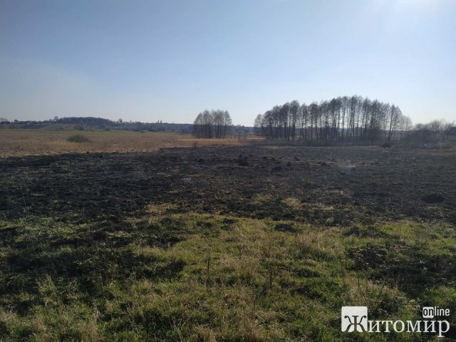 В Андрушівському районі гасили займання сухої трави та недіючого магазину. ФОТО