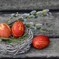 """Погода на Великдень буде з """"сюрпризами"""": синоптики оновили прогноз"""
