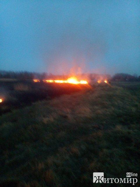 В Андрушівському районі рятувальники 4 рази виїжджали гасити займання сухої трави. ФОТО