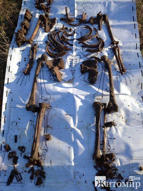 На Малинщині пошуківці віднайшли рештки солдата Червоної армії з медальйоном. ФОТО