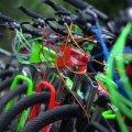 """У Житомирі """"Агенція розвитку міста"""" хоче придбати велосипедів на понад 300 тис. грн"""