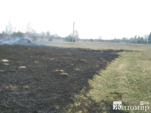 У Житомирському районі рятувальники 9 разів виїжджали гасити займання сухостою. ФОТО