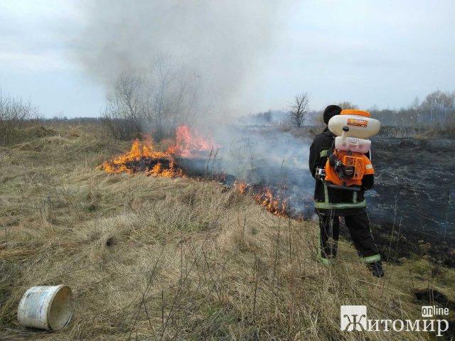 На Житомирщині рятувальникам вдалося ліквідувати пожежу, яка впритул наблизилась до газового господарства. ФОТО