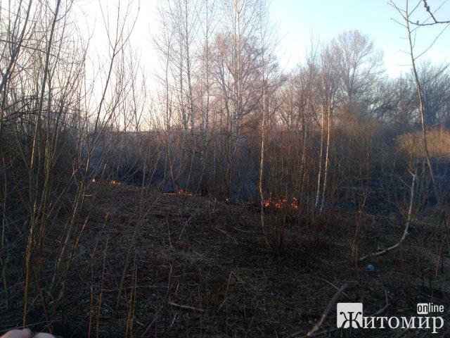 За добу рятувальники Житомирщини тричі ліквідовували займання сухої трави на площі 4 га території. ФОТО