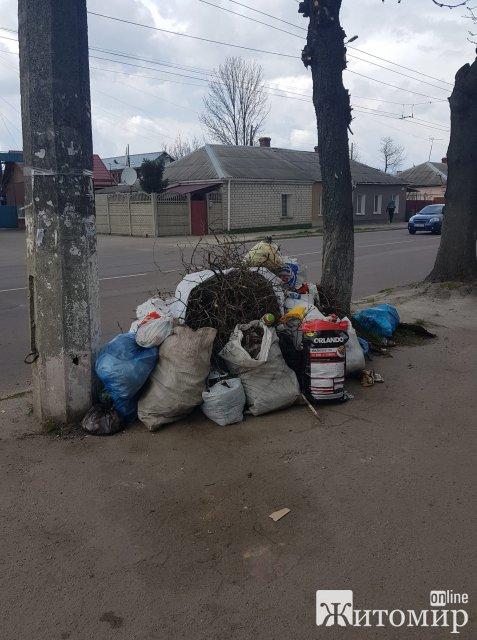 У Житомирі нова фірма по два тижні не вивозить сміття. ФОТО