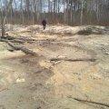 У лісовому масиві Коростенського району виявили нелегальне видобування бурштину