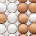 Готуємося до Великодня: як швидко перевірити яйця на придатність