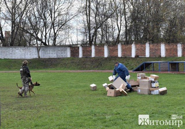 У Житомирі розпочалися п'ятиденні курси з підвищення кваліфікації кінологів спецпідрозділу КОРД. ФОТО
