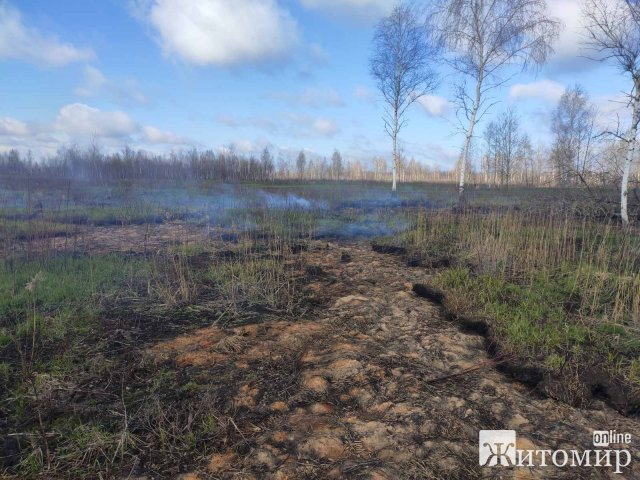 На Житомирщині почав горіти торф. ФОТО