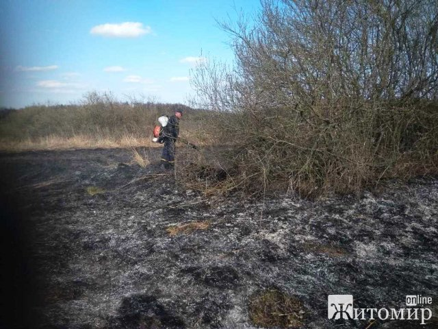 За добу вогнебрцями ліквідовано 6 загорянь сухостою в Житомирській області. ФОТО