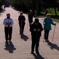 У Житомирі стартували безкоштовні навчання скандинавській ходьбі. ВІДЕО