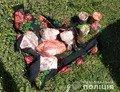 На Житомирщині викрили коростенку у крадіжці з будинку пенсіонерки. ФОТО