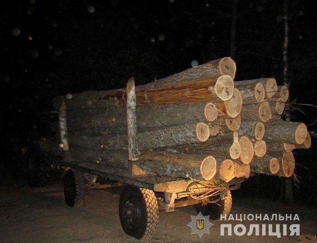 На Олевщині затримали трактор з краденими дубами. ФОТО