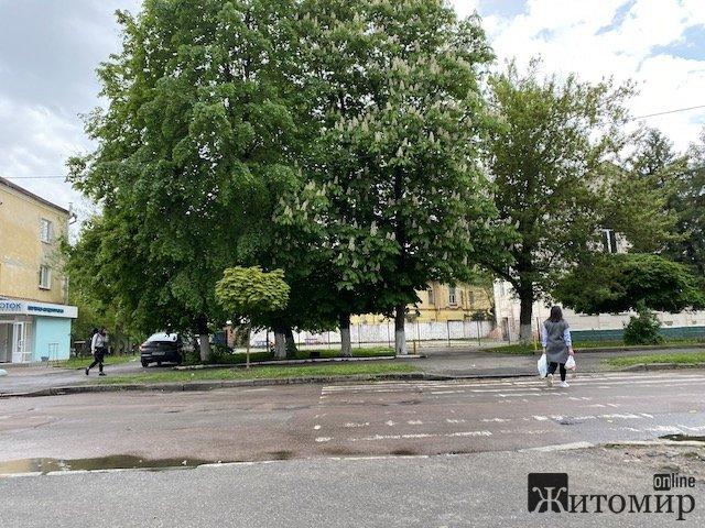 У центрі Житомира навпроти школи відкривають пивняк. ФОТО
