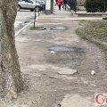 Житомирські тротуари виявилися «безхозними»