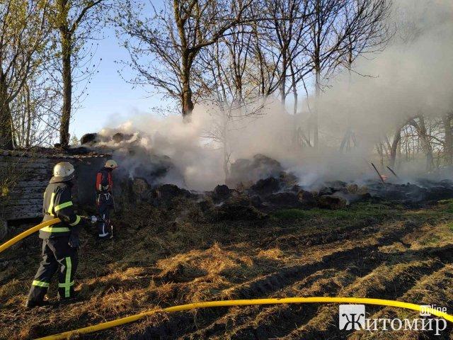 У Бердичівському районі рятувальники ліквідували пожежу дерев'яного сіннику. ФОТО