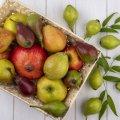 В Україні може подорожчати популярний фрукт: люблять майже всі