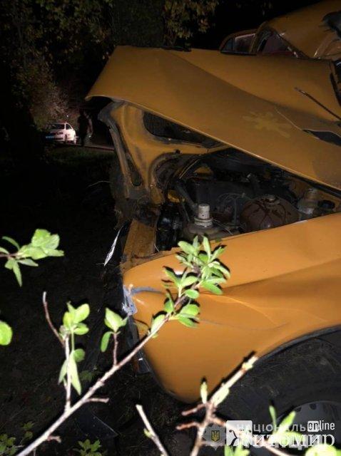 У селі на Житомирщині ВАЗ врізався в дерево: загинули водій та 15-річний пасажир. ФОТО