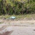 На дорозі біля Житомира досі лежить пакет, яким накривали тіло загиблого в ДТП. ФОТО