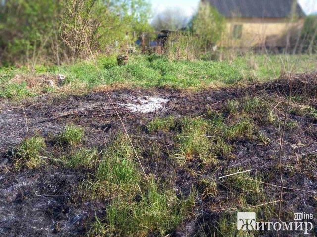 У Житомирській області вогнеборці ліквідували п'ять пожеж сухої трави та одне загоряння торфу. ФОТО